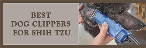 clippers for shih tzu best clippers for shih tzu to achieve great haircuts every time