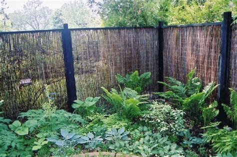 Landscape Ideas To Hide A Fence Looking Bamboo Fencing In Patio Asian With Asian