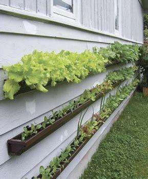 come realizzare un giardino verticale come realizzare un giardino verticale fai da te greenme