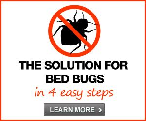 who is responsible for bed bugs landlord or tenant who is responsible for getting rid of bed bugs