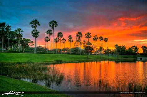 Daylight Detox Palm Gardens by Palm Gardens Mall Sunset Along Road