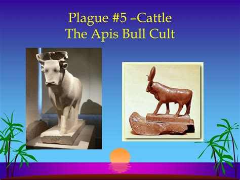 the cult of the apis bull the history ppt the plagues of ancient powerpoint presentation