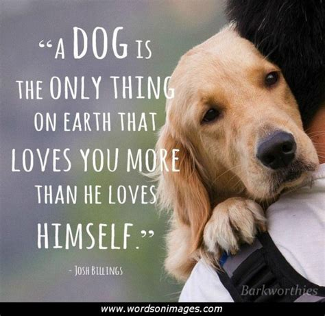 puppy sayings quotes collection of inspiring quotes sayings