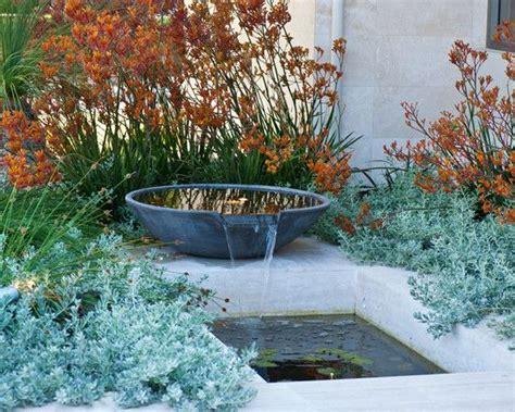 kangaroo paw water feature in an australian garden designed by peter fudge garden