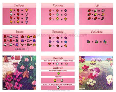 acnl flower guide animal crossing new leaf guide tumblr