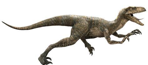dinosaurus film wiki informazioni velociraptor uno dei dinosauri pi 249 veloci e
