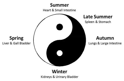 what does the yin yang symbolize yin yang ancient wisdom for personal and planetary