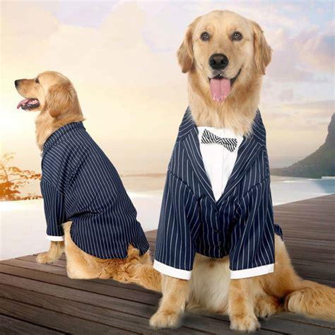 pug wedding dress pug wedding dress 100 images glamorous stanford wedding charmed events trend