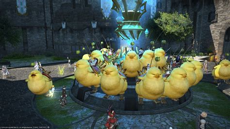 Army Home Decor Fat Chocobo The Best Thing To Hit Ffxiv The Interblag