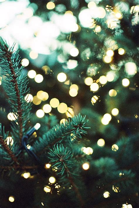 pictures of christmas trees with vertical lights best 25 background ideas on wallpaper iphone wallpaper