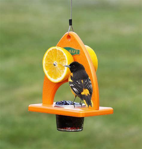 bird feeders for baltimore orioles birdcage design ideas