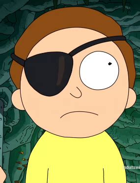 Is Evil Morty Detoxed Morty by Evil Morty Rick And Morty Wiki Fandom Powered By Wikia