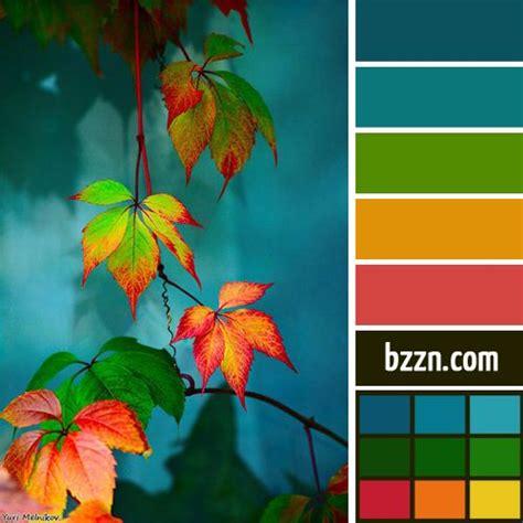 rainforest colors forest colors