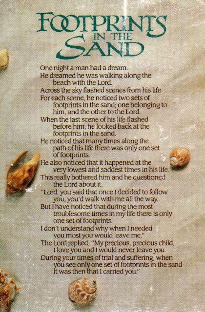 living life   max pawprints   sand