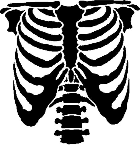 skeleton layout exles skeleton template clipart best