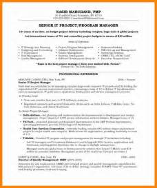 9 business project examples buyer resume
