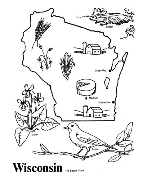 wisconsin flower coloring page wisconsin state flower coloring page wisconsin state flag