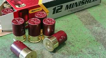 aguila minishells home defense solution or marketing