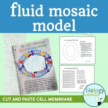 bilayer haircut cell membrane fluid mosaic model phospholipid bilayer by