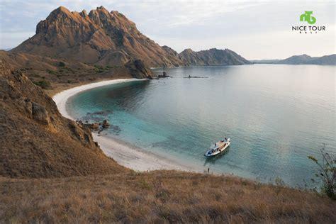 komodo island day tours  bali lifehackedstcom