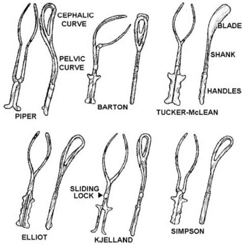 forceps used in c section 5 11 facts about forceps delivery obstetric and newborn