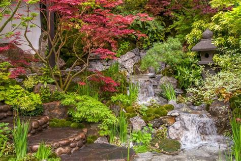 Edo Garden edo no miwa edo garden at the rhs chelsea flower show