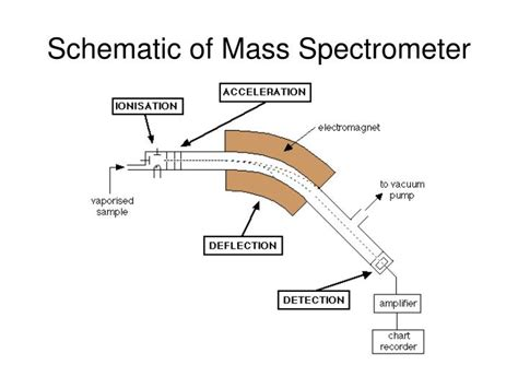 schematic diagram of a mass spectrometer ppt isotopes and average atomic mass powerpoint