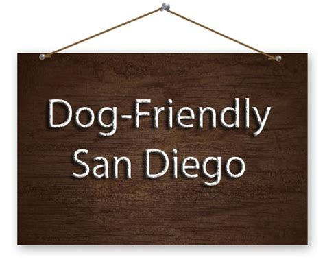 the dog house san diego dog friendly queenstown public house