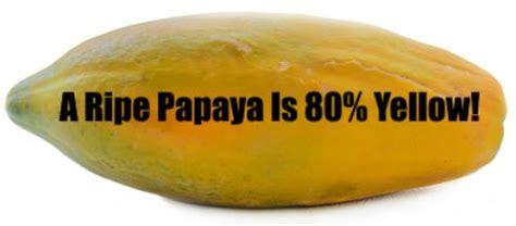 how to cut a papaya kitchensanity