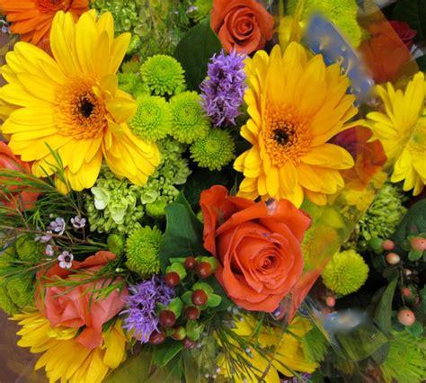 sognare fiori gialli fiori arancioni e gialli stratfordseattle