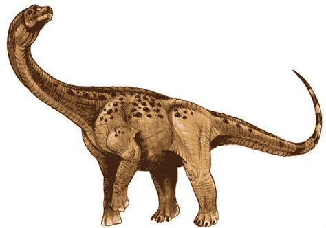 dinosaur antarctosaurus information for kids