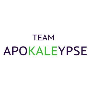 gishwhes coffee table book 2017 team apokaleypse the best gish team