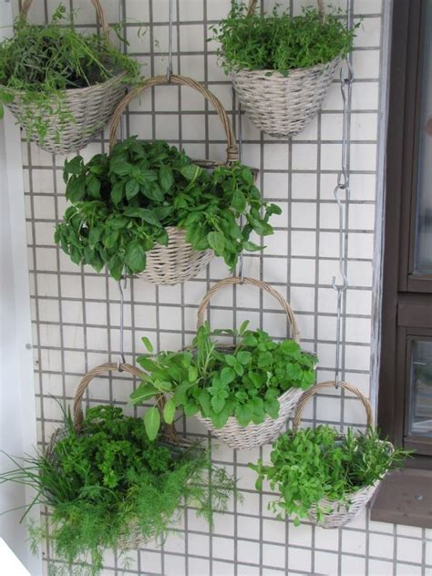 how to start a diy vertical garden and 7 ideas you should