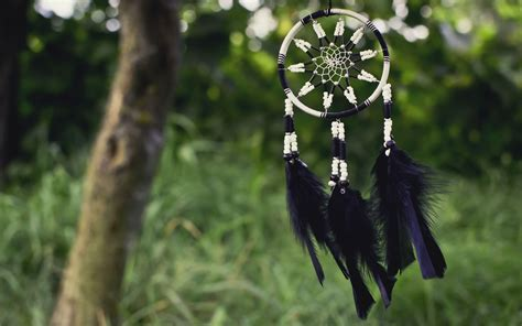 dreamcatcher backgrounds page    wallpaperwiki