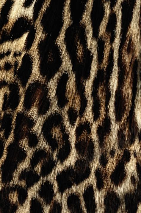 leopard print texture pattern by happycer4027 55 best images about animal print texture on pinterest