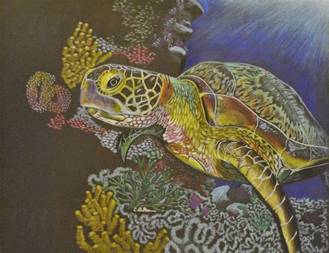cari art sea turtle cari aiken art