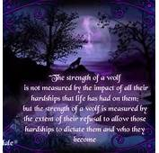 Wolf Love Quotes Car Pictures