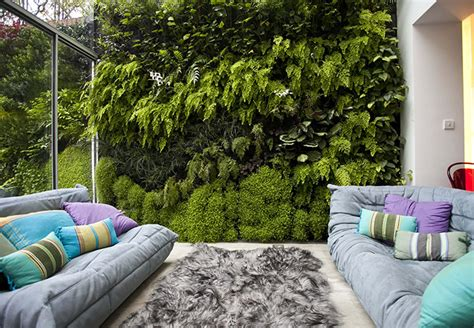 Living Wall Indoor Gardens Living Wall In Pictures And Style The