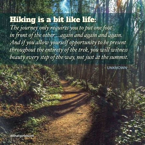 Writes A Rambling Letter To The World Snarky Gossip 5 by Best 25 Hiking Quotes Ideas On Mountain