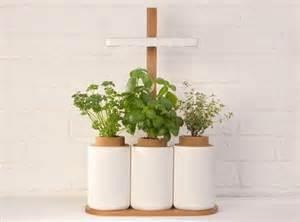 lilo le pack pour pousser facilement des herbes