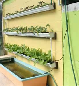 Indoor Hydroponic Herb Garden - diy rain gutter aquaponic system