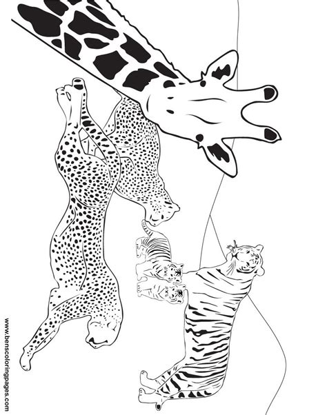 coloring pages creation animals free coloring pages of day 5 creation story