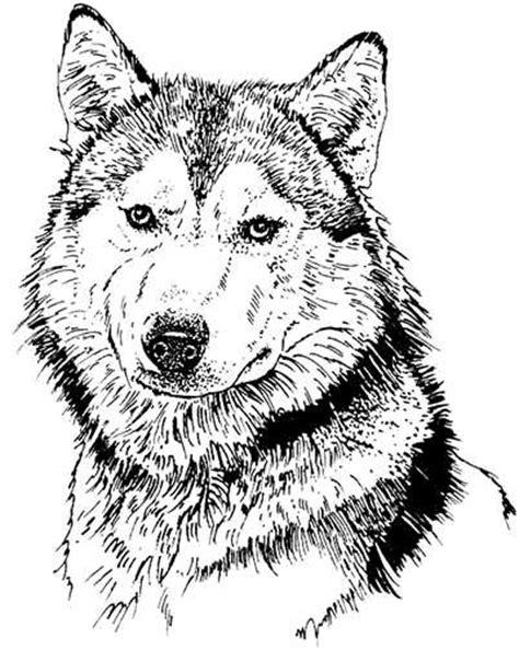 imagenes de amor animadas en blanco y negro perros en blanco y negro perros gifs animados