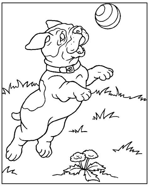 coloring pages of dog prints dog color page coloring home