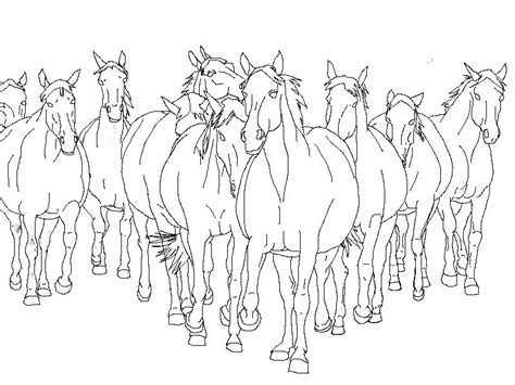 herd of horses coloring pages horse herd drawings sketch coloring page