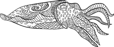 cuttlefish coloring page royalty free cuttlefish clip art vector images