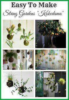 hangingwallvertical garden images garden