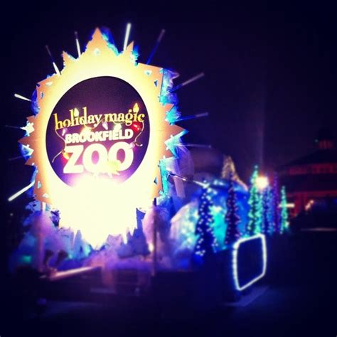 brookfield zoo lights hours 95 best images about chitown on happenings