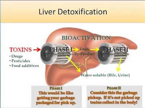21 Day Detox Diet Standard Process by Health Advantage Standard Process Purification Program