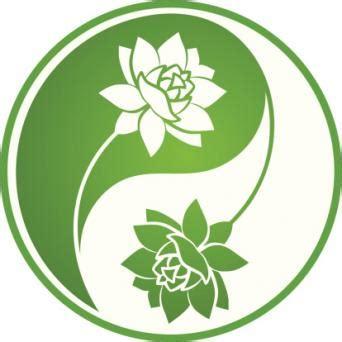 lotus asian kitchen